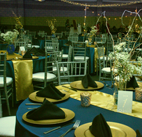 Blue and Gray Gala