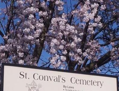 Annual Mass at St. Convals Cemetery