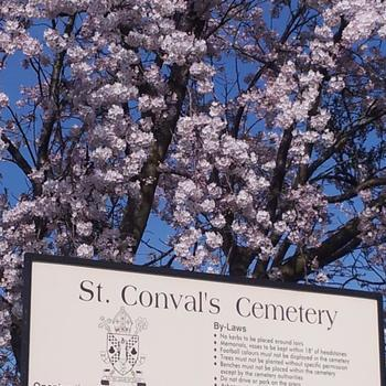 St Conval's Cemetery Mass