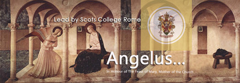 Angelus live from Scots College Rome - save the 8th