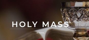Join in prayer from your own home as Holy Mass is celebrated  <span>live.</span>