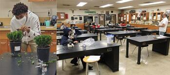 SJM Science Classes Get Hands-On