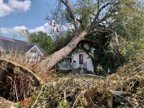 Tree on house after the 2020 derecho in Linn County