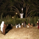 Immaculate Conception had live nativity scene