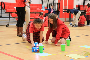 Students Participate In S.T.E.M. Olympics
