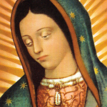 Missionary Image of Our Lady of Guadalupe coming to the diocese in August