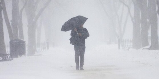 Cancellations: Weather/Covid