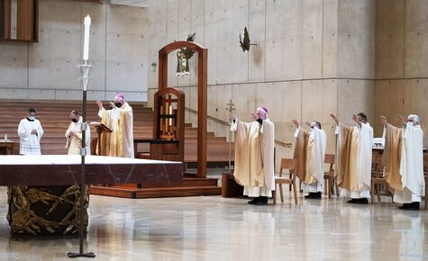 Amid pandemic, LA's annual Mass for the sick finds a deeper meaning