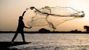 Cast Your Nets