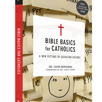 Bible Basics for Catholic - Bible & Book study