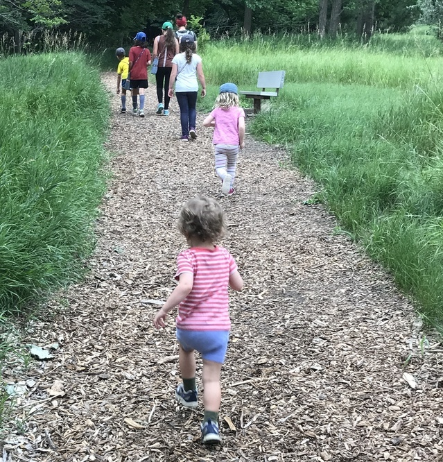 Children walking on path to the forest