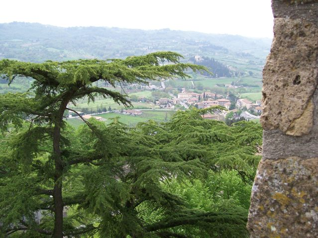 Beautiful picture of a valley near Assisi Italy