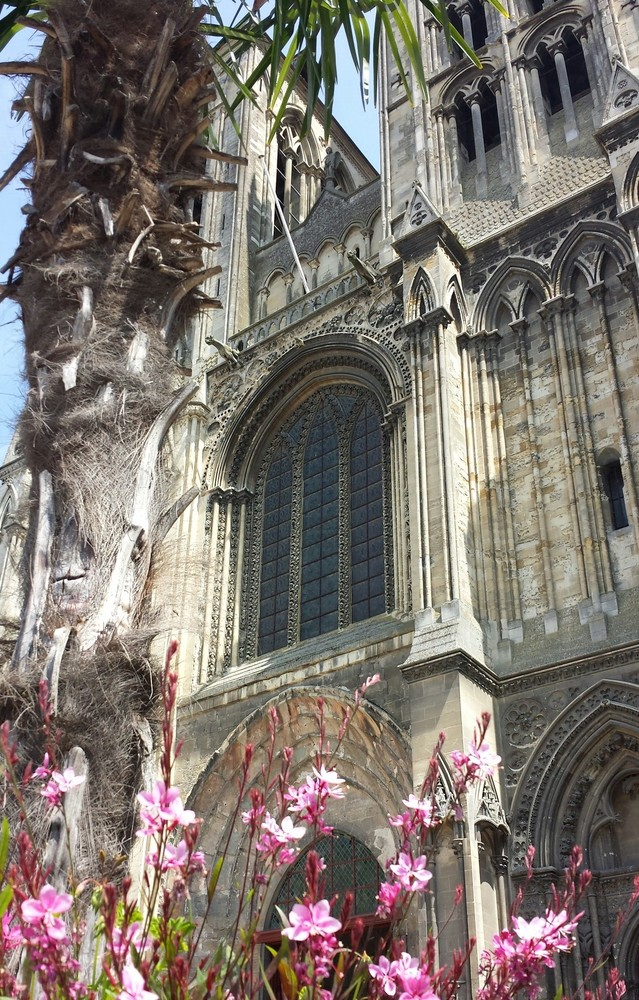 Old Church in Spain with pink flowers and a palm tree in front