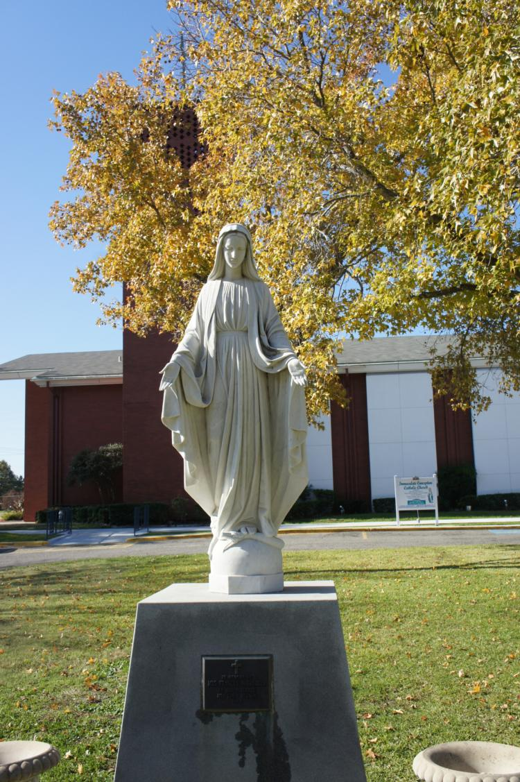 Sunday Homily: Mary, Mother of God   Immaculate Conception