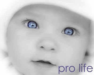 Sunday Homily: We are Pro-life!
