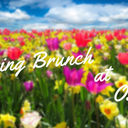 Spring Brunch – postponed