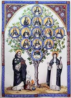 Dominican family tree