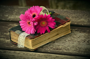 Book Image with flowers