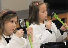 Holy Cross students with magnifying glasses examine celery stalks