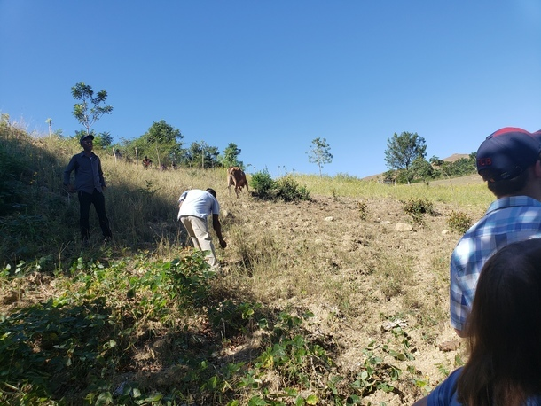 Our Field that we are developing to provide wider nutrition to School Children at St. Yves Parish in Savanette Cabral Haiti