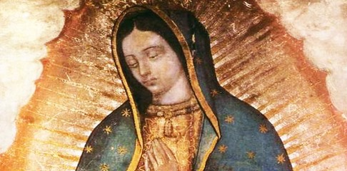 Online Giving - Our Lady of Guadalupe Church