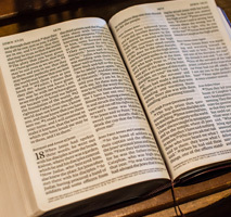 Daily Mass Readings