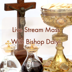 Live Stream Mass With Bishop Daly