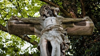 Travels with Guapo, Part III: The Cross Entangled