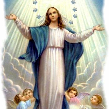 Immaculate Conception Feast Celebration