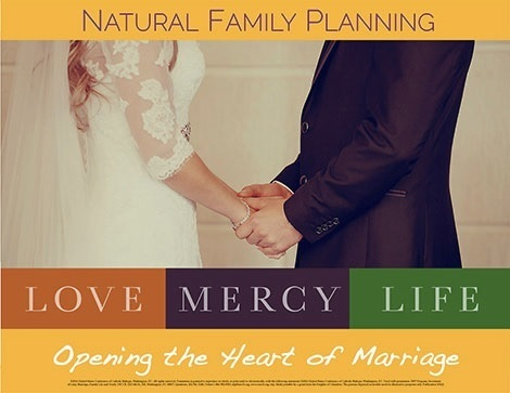 Natural Family Planning logo