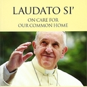 Small group opportunity: Laudato si'
