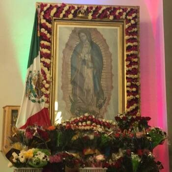 Mass of the Feast of Our Lady of Guadalupe | Misa de Nuestra Señora de Guadalupe