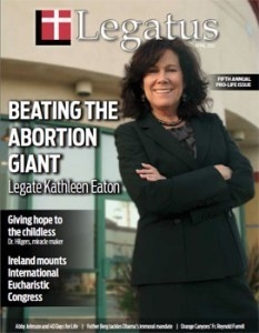 Fighting the abortion giant