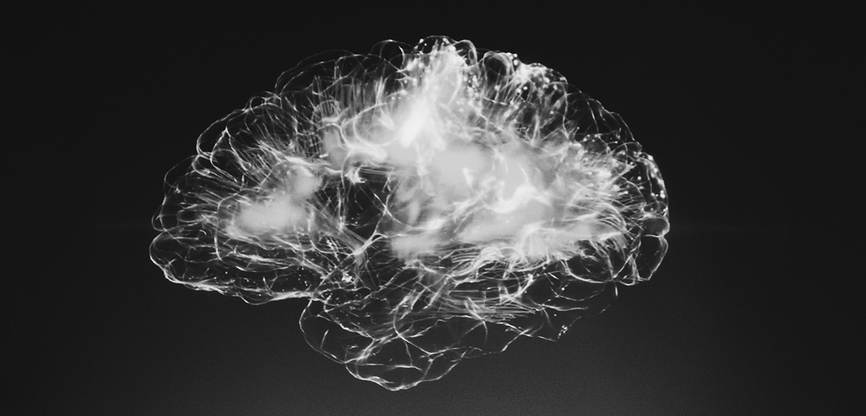 Brain death is verifiable with proper testing