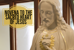 Pray the Sacred Heart Novena Together