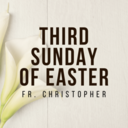 Third Sunday of Easter | Vigil Mass | Fr. Christopher