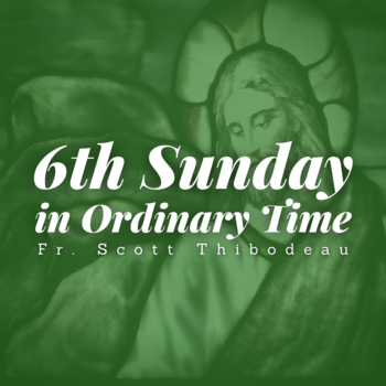 6th Sunday in Ordinary Time | Homily | Fr. Scott