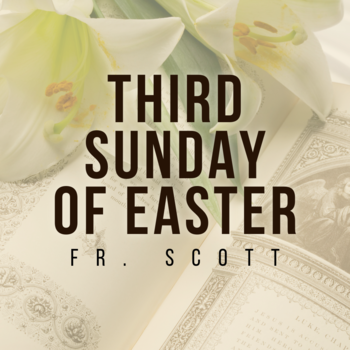 Third Sunday of Easter | Homily | Fr. Scott