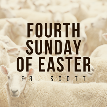 Fourth Sunday of Easter | Homily | Fr. Scott