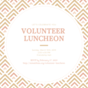 Second Annual Volunteer Luncheon Sunday March 10th