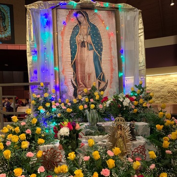 Nuestra Senora de Guadalupe / Our Lady of Guadalupe