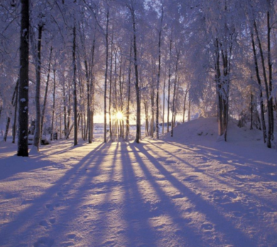 """November 28: """"Watch For the Light: A Pre-Advent Morning of Reflection"""""""