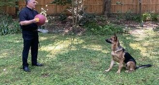 Dog is 'visible guardian angel' for blind Virginia priest