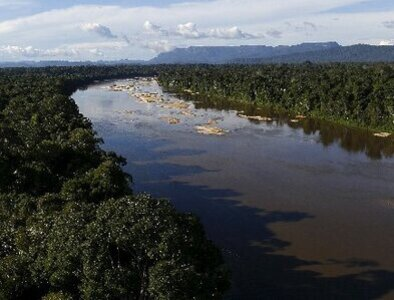 Church leaders from U.S., Amazon ask governments to protect rainforest