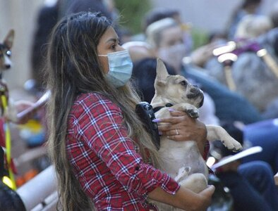 Chorus of barks is heard amid singing at blessing of animals in Portland