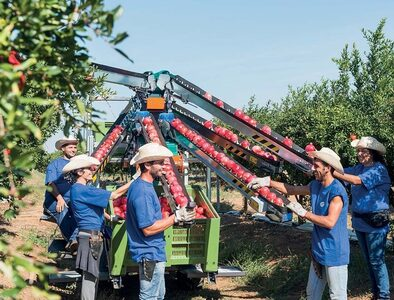 Practicing sustainable agriculture creates new jobs