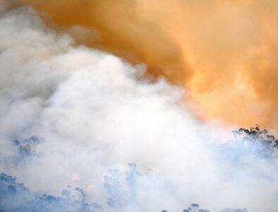 Australian Bishops call for action to care for earth and poor