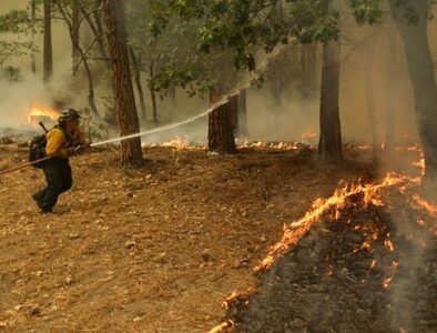 WCC expresses solidarity with churches affected by wildfires