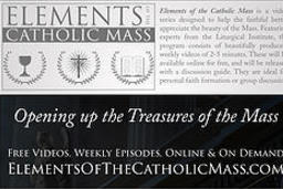 Elements of the Catholic Mass is designed to help the faithful better appreciate the beauty of the Mass.