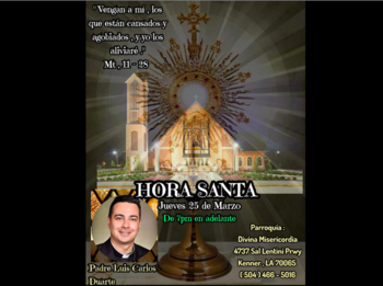 Holy Hour with Fr. Luis